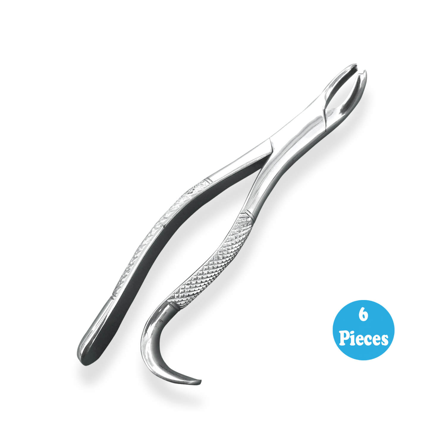 6 Dental Tooth Extracting forceps #287 With Serrated Jaws