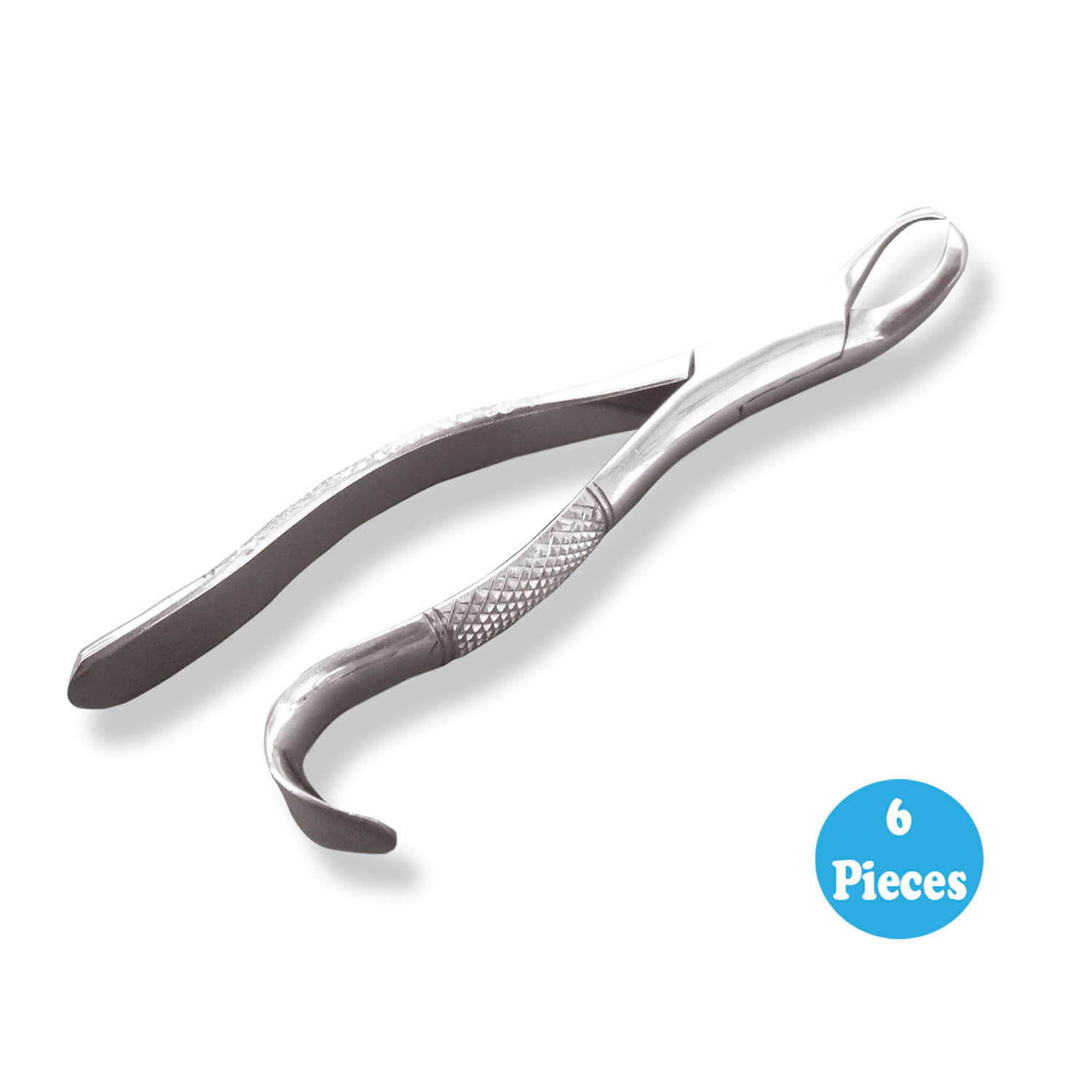 6 Extracting forceps Dental Surgical 16S