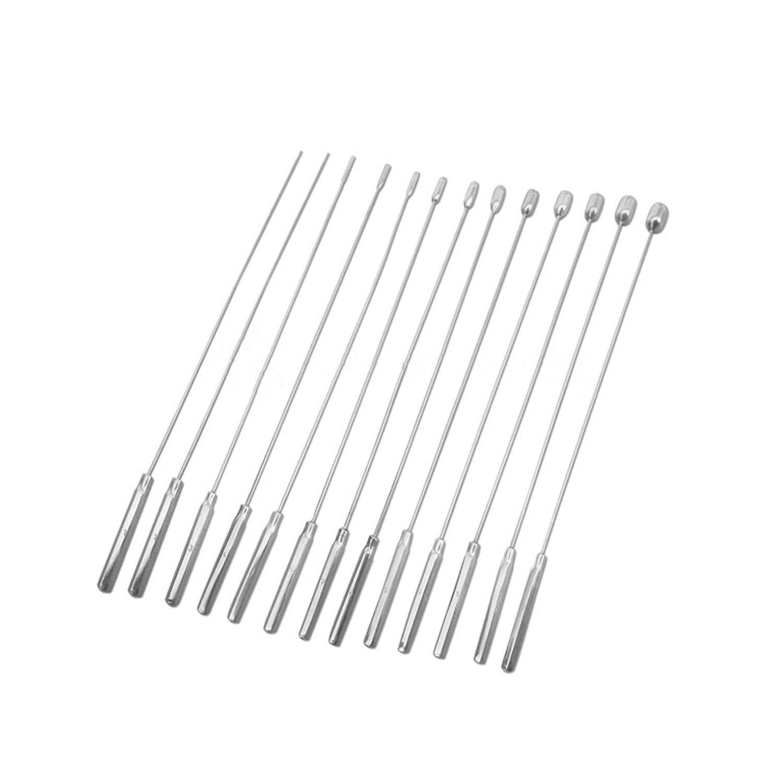 13 Pcs Set of Bakes Rosebud Dilators Urethral Gynecology Instruments